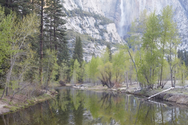 JM150417_Yosemite_029